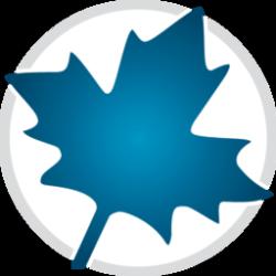 Maplesoft Maple 2021.1 Crack